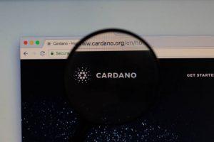 บริษัทจัดอันดับระดับโลก Weiss Ratings จัดให้เหรียญ Tezos และ Cardano เหนือชั้นกว่า Bitcoin