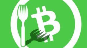 ผู้ถือเหรียญ Bitcoin Cash เตรียมได้รับเหรียญใหม่ฟรีจากการ Hardfork ในเดือนพฤศจิกายนนี้