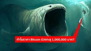 ราคา Bitcoin ร่วงทะลุ 1,000,000 บาทเพราะอะไร? เจ้ามือมีคำตอบ